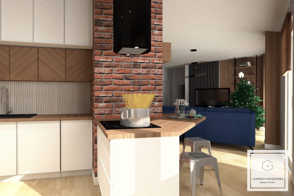 agnieszka gwozdowska design studio projektant wnetrz lodz salon industrialny (4)