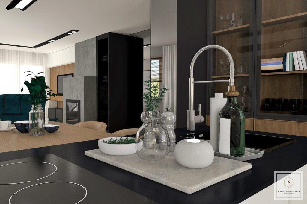 agnieszka gwozdowska design studio dom w zgierzu lodz (4)