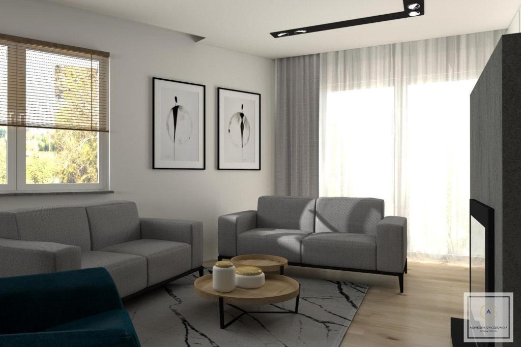 agnieszka gwozdowska design studio dom w zgierzu lodz (2)